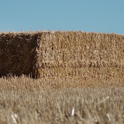 View from below of a block of straw in the middle of a flat field